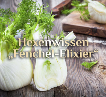 "Fenchel-Elixier 🍵 Kräuter-Elixier ""Besser Magen"" 🍵 Rezept Fenchel-Anis-Kümmel-Elixier"