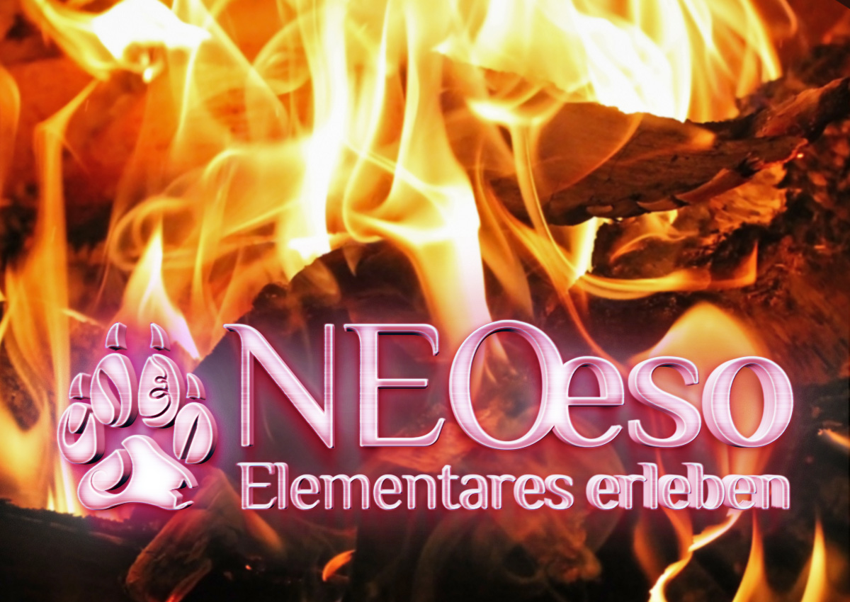 Seminar Feuer | elementares Erleben