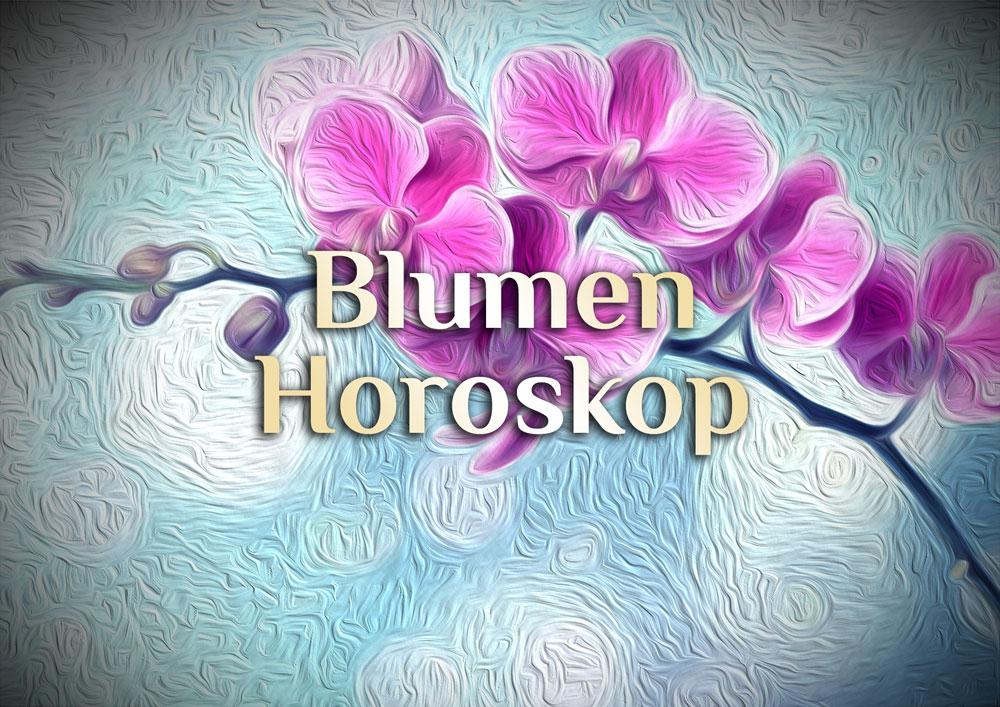 Blumen Horoskop | Horoskop der Blumen