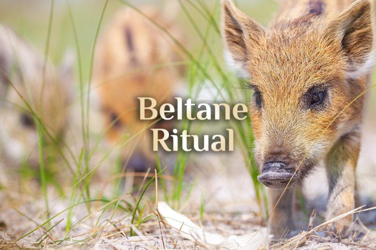 Beltane Ritual 🌞 Ritual zu Beltane 🌞 Beltaine  01. Mai