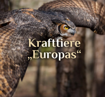 Elementares Krafttier Alphabet (Europa)