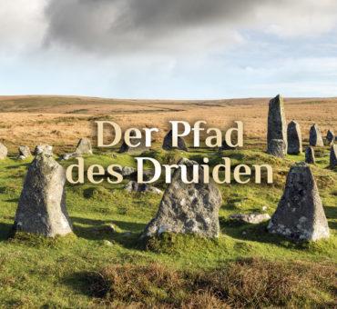 Der Druide 🧙🏻 keltische Druiden 🧙🏻♂️ modernes Druidentum
