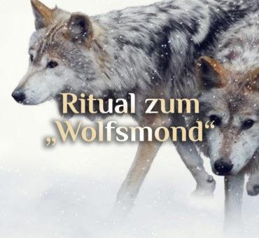 Wolfsmond Ritual  🐺 Schutzritual 🌕 Wolfsrudel Ritual 🐺 Vollmond