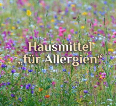 Allergie behandeln 💐 natürliche Hilfsmittel bei Allergie 💐 natürliche Mittel gegen Allergie
