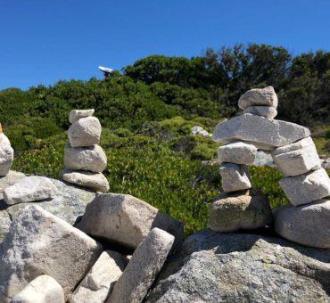 Tipps zur Meditation für Anfänger | Meditation erlernen | elementare Meditation