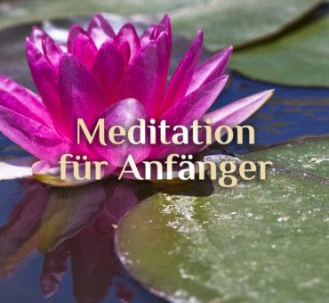 Tipps zur Meditation für Anfänger 🧘🏼 Meditation erlernen 🧘🏻♂️ elementare Meditation