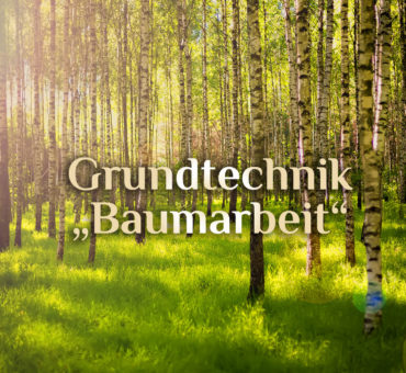 Grundtechniken Baumarbeit 🌳 Basis der Baummedizin 🌲 spirituelle Baumverbindung