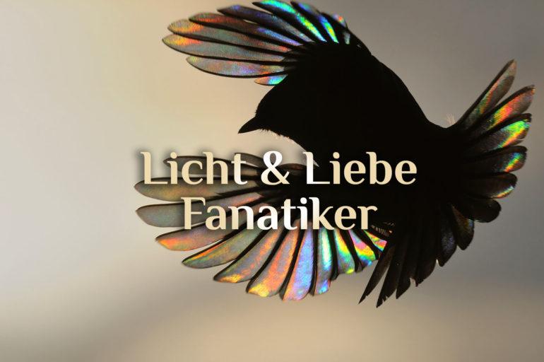 Licht & Liebe Fanatiker ☀️ | Fanatismus des Lichts & der Liebe 💛