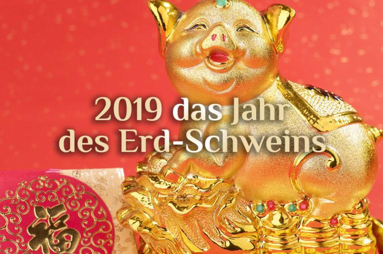 Chinesisches Neujahrsfest 2019 | Dienstag, 5. Februar | Das Jahr des Erd-Schweins 🐷