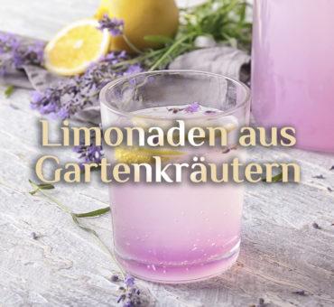 Hexenrezepte für 🌿 Gartenkräuter Limonaden 🍹