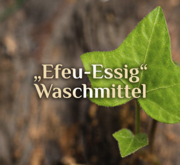 Essig-Efeu-Waschmittel 🍃 Hausmittel für Wäsche 🧼 Waschen mit Efeu-Essig