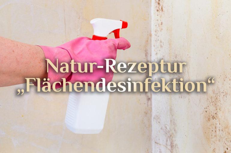 Rezept für Desinfektionsspay ⚗️ Natürliches Oberflächendesinfektionsmittel 🧼 Desinfektionsspray selbst herstellen